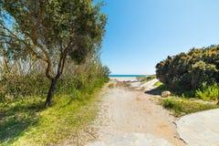 Gangweg aan het strand royalty-vrije stock foto