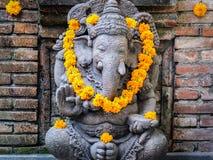 Ganisha z żółtymi kwiatami Zdjęcia Stock