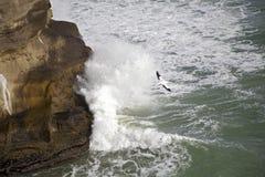Gannet Flugwesen unter abbrechenden Wellen stockfoto