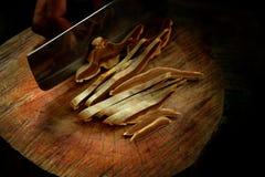 Ganoderma lucidum Lingzhi pieczarka obrazy royalty free