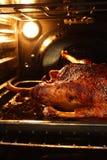 Gans in oven royalty-vrije stock foto's