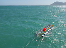 Κλουβί κατάδυσης καρχαριών σε Gansbaai Νότια Αφρική Στοκ εικόνα με δικαίωμα ελεύθερης χρήσης