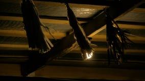 Ganska garnering som vinkar i vinden på natten lager videofilmer