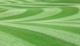 ganska golf långt Royaltyfria Bilder