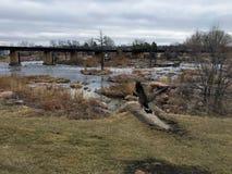 Gansos canadienses delante de Sioux River grande en Sioux Falls, Dakota del Sur con las opiniones la fauna, ruinas, trayectorias  foto de archivo libre de regalías