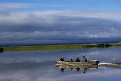 Gansu, Cina: Quattro uomini in barca di legno Immagini Stock Libere da Diritti