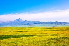 Gansu Province bucolic Stock Images