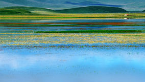 Gansu rivers and grassland scenery Royalty Free Stock Images