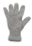 Gant de l'hiver Image libre de droits