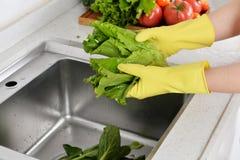 Gant en caoutchouc de nettoyage de vaisselle en caoutchouc de cuisine de ménage photos libres de droits