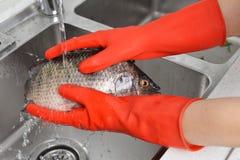 Gant en caoutchouc de nettoyage de vaisselle en caoutchouc de cuisine de ménage photo stock