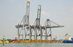 Gantry cranes at the container port Stock Image