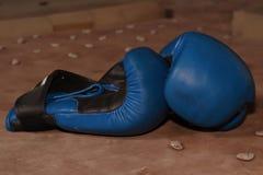 Gants de boxe Images stock
