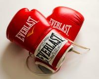 Gants de boxe d'Everlast photographie stock