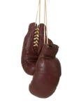 Gants de boxe de cru image libre de droits
