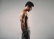 Gants de boxe de port de jeune homme convenable regardant vers le bas Images libres de droits