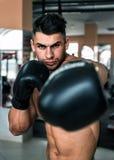 Gants de boxe noirs Images libres de droits