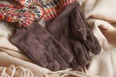 Gants de femmes de suède de Brown sur une étole chaude beige image stock
