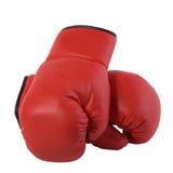 gants de fleur de boxe photos libres de droits