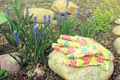 Gants de fleur de ressort et en caoutchouc bleus Images stock