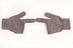 Gants de l'hiver Photographie stock libre de droits