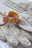 Gants en cuir et ambre Images stock