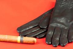 Gants et cigare Photo libre de droits