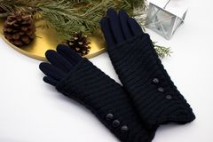 Gants et décoration bleus de Noël image libre de droits