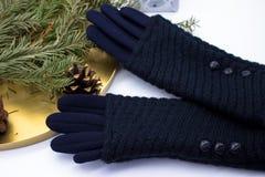 Gants et décoration bleus de Noël image stock