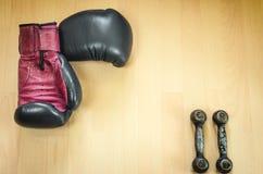 Gants et haltères de boxe Photographie stock libre de droits