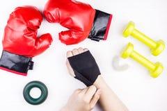 Gants et patte de boxe Images libres de droits