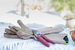 Gants et tondeuses de jardin Images stock