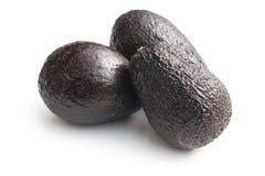 Ganze Avocados Lizenzfreies Stockfoto