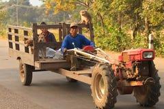 Ganze Familie mit Hunden und Affen auf einem traktor Lizenzfreie Stockbilder