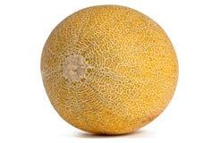 Ganze Galia Melon auf Weiß Stockfoto
