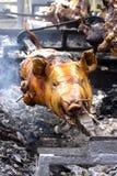 Ganze Karkasse einer Schweinröstung auf dem Grill lizenzfreies stockbild