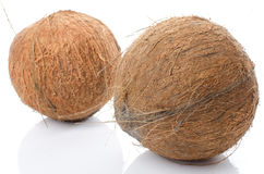 Ganze Kokosnüsse Lizenzfreies Stockbild