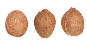 Ganze Kokosnuss drei lokalisiert auf weißem Hintergrund Flache Lage Beschneidungspfad eingeschlossen Lizenzfreie Stockfotografie