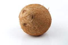 Ganze Kokosnuss mit Beschneidungspfad Lizenzfreie Stockfotos