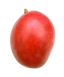 Ganze Mangofrüchte Stockbild