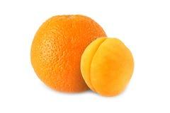 Ganze Orange und Aprikose lokalisiert lizenzfreies stockbild