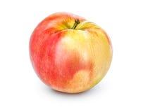 Ganzer Apfel mit dem Stiel lokalisiert auf einem weißen Hintergrund, Nahaufnahme Ein frischer einzelner Apfel schnitt mit der Bes Stockfotografie