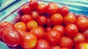 Ganzer Roma Tomatoes stockbild