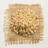 Ganzer Sprödigkeits-Reis-Samen Schließen Sie oben von den Körnern über Leinwand Stockfotografie