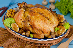 Ganzes briet das Huhn, das mit Buchweizen und Pilzen angefüllt wurde Stockfotografie