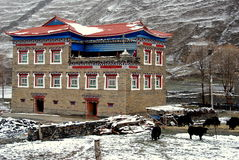 Ganzi, China: Tibetanisches Haus und Yaks Lizenzfreies Stockbild