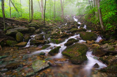 Gap Creek cascades, Cumberland Gap National Park. A foggy morning over Gap Creek in the Cumberland Gap National and Historic Park. Slag can be seen in the creek Stock Photos