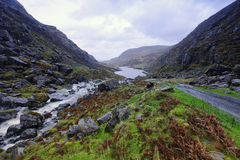 Gap Of Dunloe Stock Image