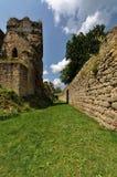 Gap entre las paredes con la hierba Fotografía de archivo libre de regalías
