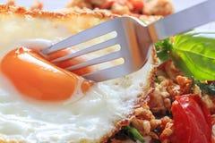 Gapao ryż zdjęcie stock